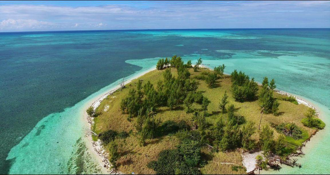 Commercial for Sale at West End, Freeport And Grand Bahama Bahamas
