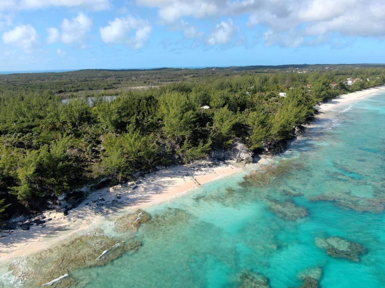 Single Family Homes for Sale at North Palmetto Point, Palmetto Point, Eleuthera Bahamas